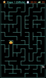 Capture du jeu de labyrinthe.